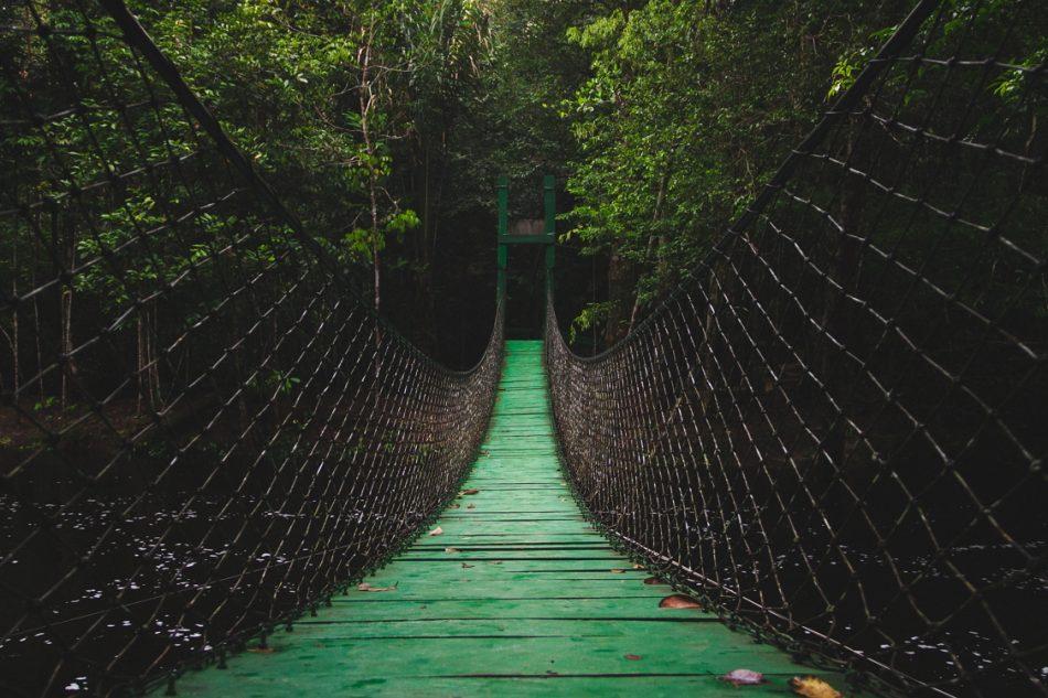El Buen Vivir: cosmovisiones ancestrales y nuevos paradigmas